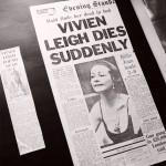 Vivien Leigh clippings Topsham Museum