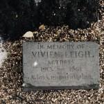 Vivien Leigh tree Stratford upon Avon