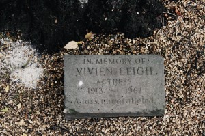 Vivien Leigh tree Stratford upon Avon