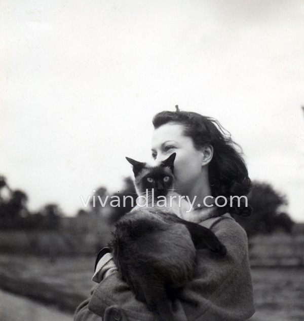 Vivien Leigh and cat New Boy at Notley Abbey