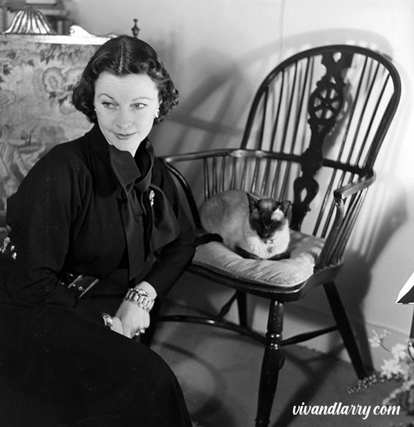 Vivien Leigh and her Siamese cat Boy, photographed by Tom Blau at Durham Cottage, 1951